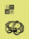 全職高手葉王小說《自然消滅》
